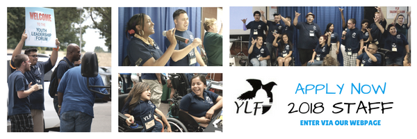 Various photos of diverse YLF alumni on staff
